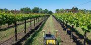 Roboty a drony sa budú starať o vinice