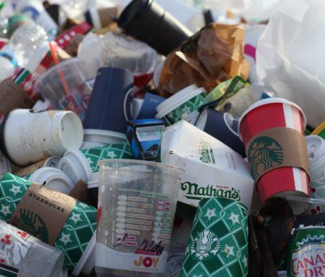 Triedením kuchynského odpadu splníme európske normy a ochránime pôdu
